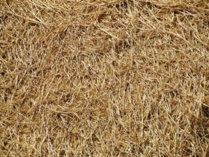 Baled hay - safety on the farm